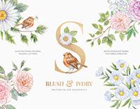 Blush & Ivory Watercolor Floral Set