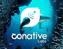 Conative Identity - هوية متكاملة