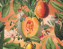 BG Magazine / Botánica