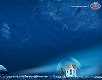 Sharky Ad Design
