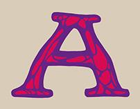 Surfer Zoil Typeface Design