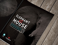 Elephant VS Mouse: The Ivory Trade on Craigslist
