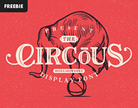 Free Download: The Circus Display Font