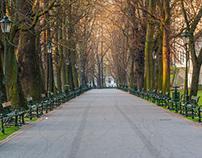 Morning in Krakow
