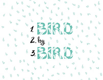 Creative Confidence Typography Poster - Bird by Bird