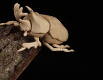 Kabutomushi (Japanese Rhino Beetle)