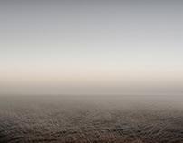 Nebel Felder (Fog Fields)