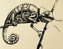 Etchings about Robot Animals