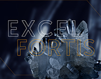 Excel Fortis - website