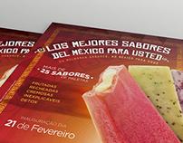 Panfleto - Los Palechicos - Paletas Mexicanas