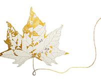 Maple leaf + 10 creatures