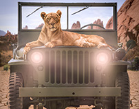 Photo Composite:  Lion on Jeep