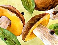 Mushrooms «GRIBNOY DOZHD'»