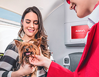 AVIANCA / TRAVEL SMART Aircraft cabin