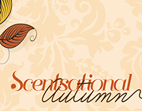 Scentsational Autumn Digital Campaign - Scentsation