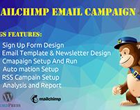 Mailchimp Fiverr Gig