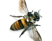 Mechanical bee - Abeja mecanica