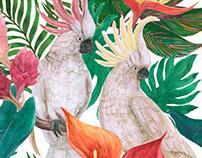 Watercolor parrots pattern