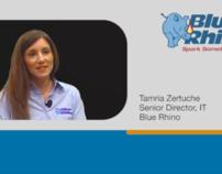 Video - 2011 Blue Rhino Customer Testimonial