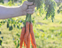 Carrots time