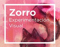 Zorros experimento visual / visual experiments