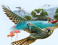 Sharjah Eco Tourism