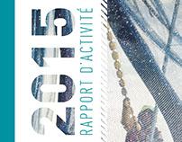RAPPORT D'ACTIVITE 2015