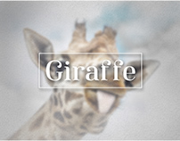 Giraffe Ecommerce App UI Design