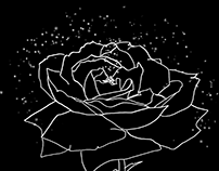 a Rose – Rotoscoping Motion