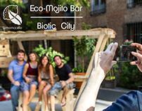Limonccelo / Eco - Mojito Bar