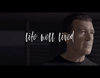 Life well lived / Picasso Towers