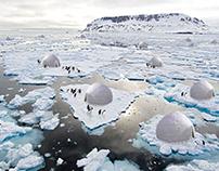 Penguins protection system, Antarctica by Sajjad Navidi