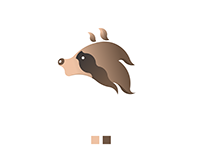 Racoon Logo with Golden Ratio
