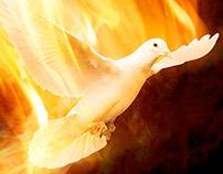 Fiery Dove Illustration (2008)