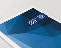 OBRAINSA Annual Report 2013