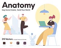 Anatomy illustration builder