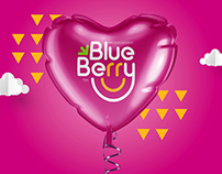 Blueberry Frozen Dessert // Branding
