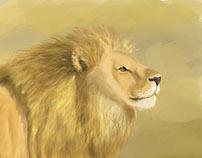 Animals illustration process