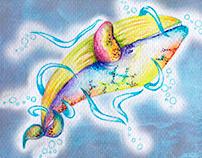 ------- The Rainbow Whale