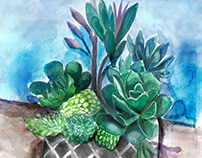 SUCCULENT AND CACTI WATERCOLOR AND INK ILLUSTRATION