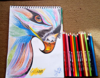 Colorful Eagle Charcoal Color Pencil Drawing (#SyedArt)