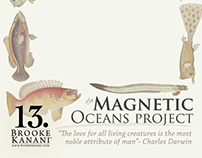 Brooke Kanani™ Magnetic Oceans Project Packaging Design
