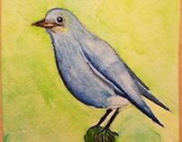 Water color Blue bird