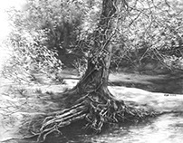 Realistic pencil drawing of the 'Fairytale Tree'