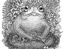 Frog + Fragments