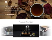 Teamosa | Refonte de site web