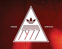 Adidas Skateboarding Shirt Graphics