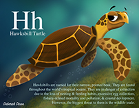 H is for Hawksbill Turtle