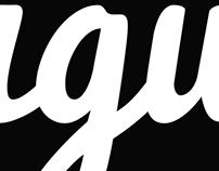 Figurr Logo