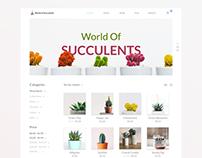 We Love Succulents | Minimal Shop Layout |